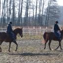 Kurs Jeździecki grupa młodzieżowa.