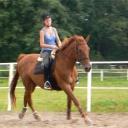 Kurs jeździecki - trening
